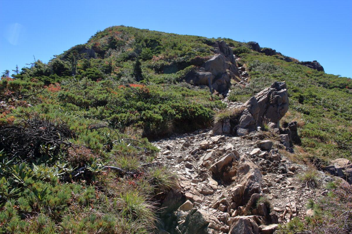 小至仏山のピーク