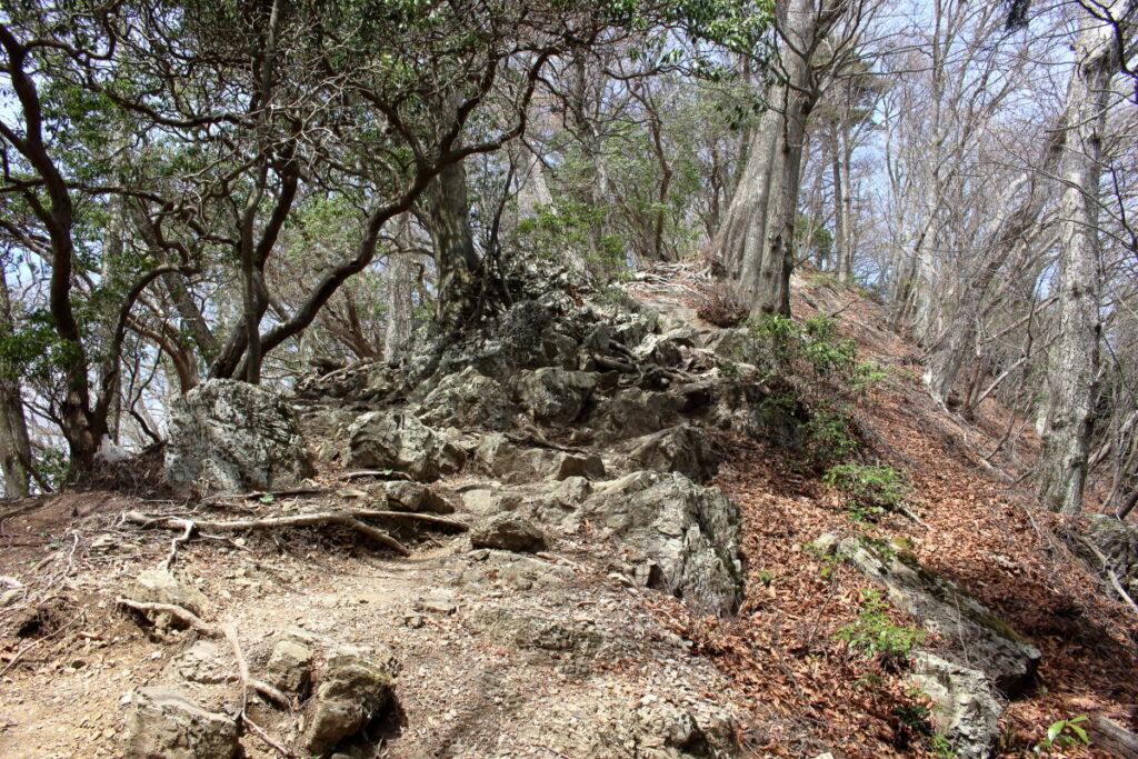 大持山山頂直下の岩場