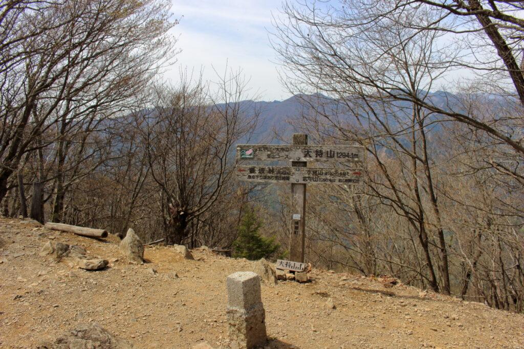 大持山の山頂