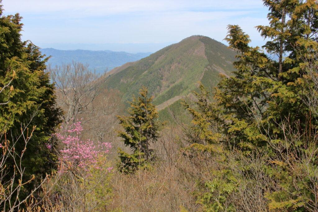 小持山山頂から眺める武甲山