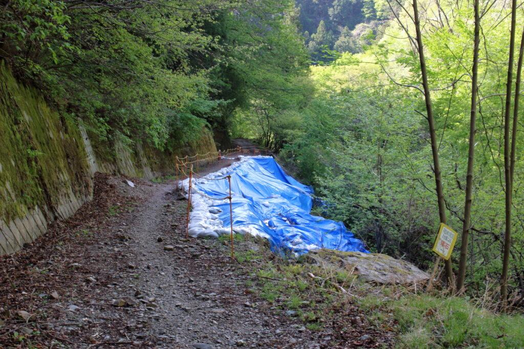 橋立川沿いの林道の崩落箇所