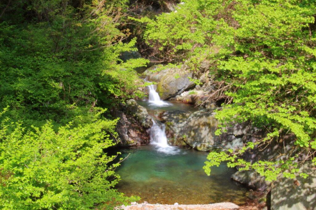 林道の橋の上から眺める小さな滝