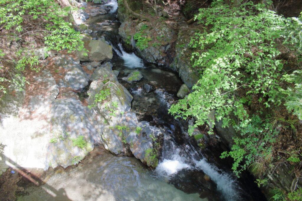 林道沿いに流れる大鹿川