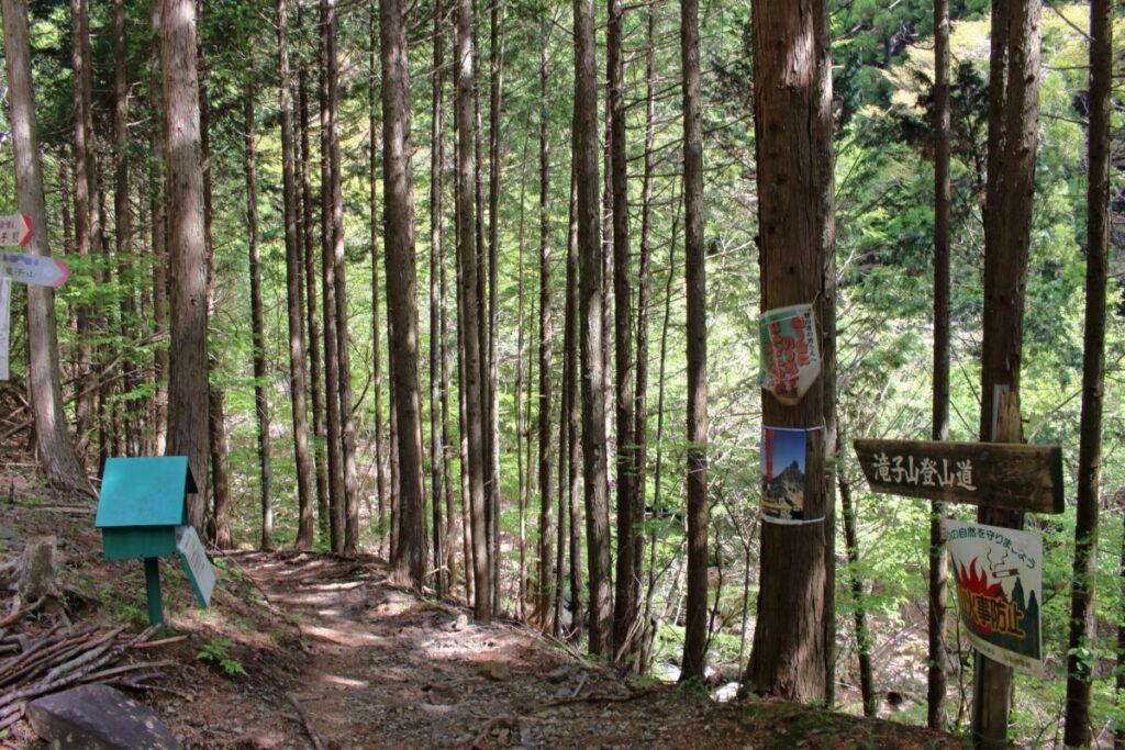 滝子山登山口