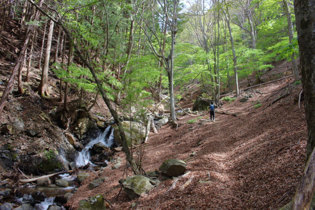 すみ沢と登山道