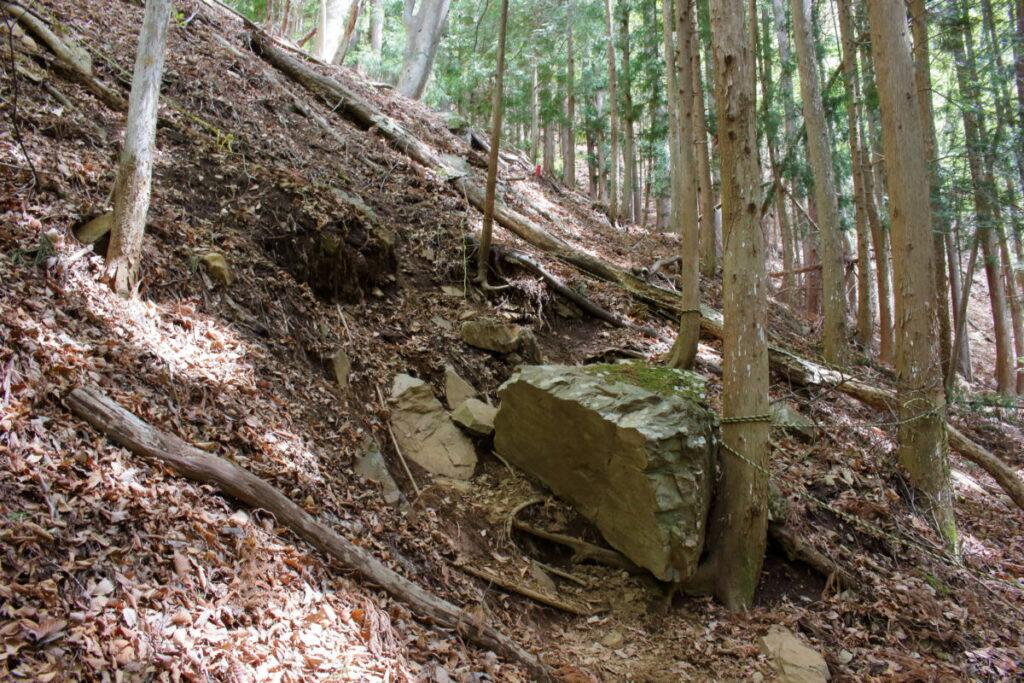 すみ沢から離れて山の斜面を登る