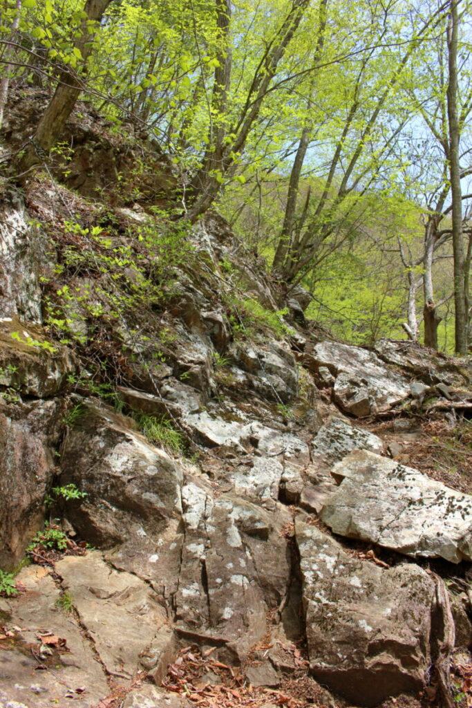 ロープが張られた岩場