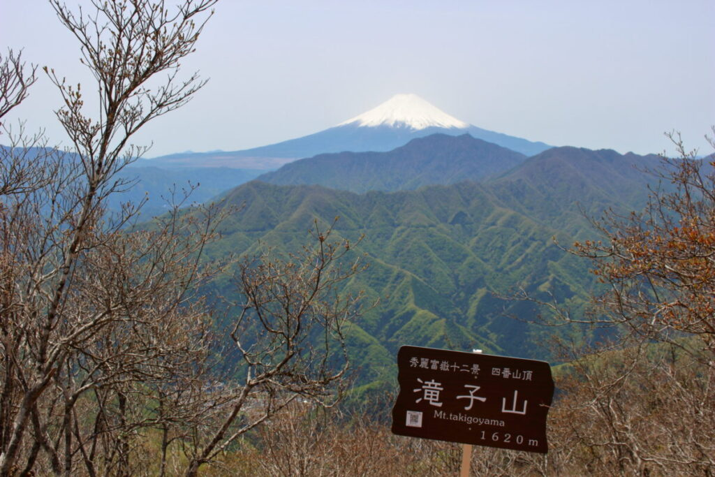 滝子山山頂から眺める富士山