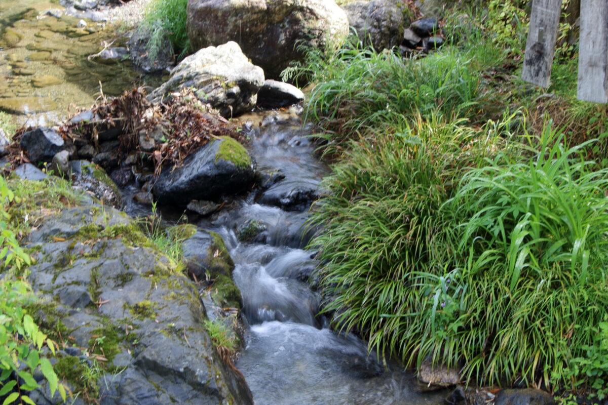 道路脇の平溝川の流れ