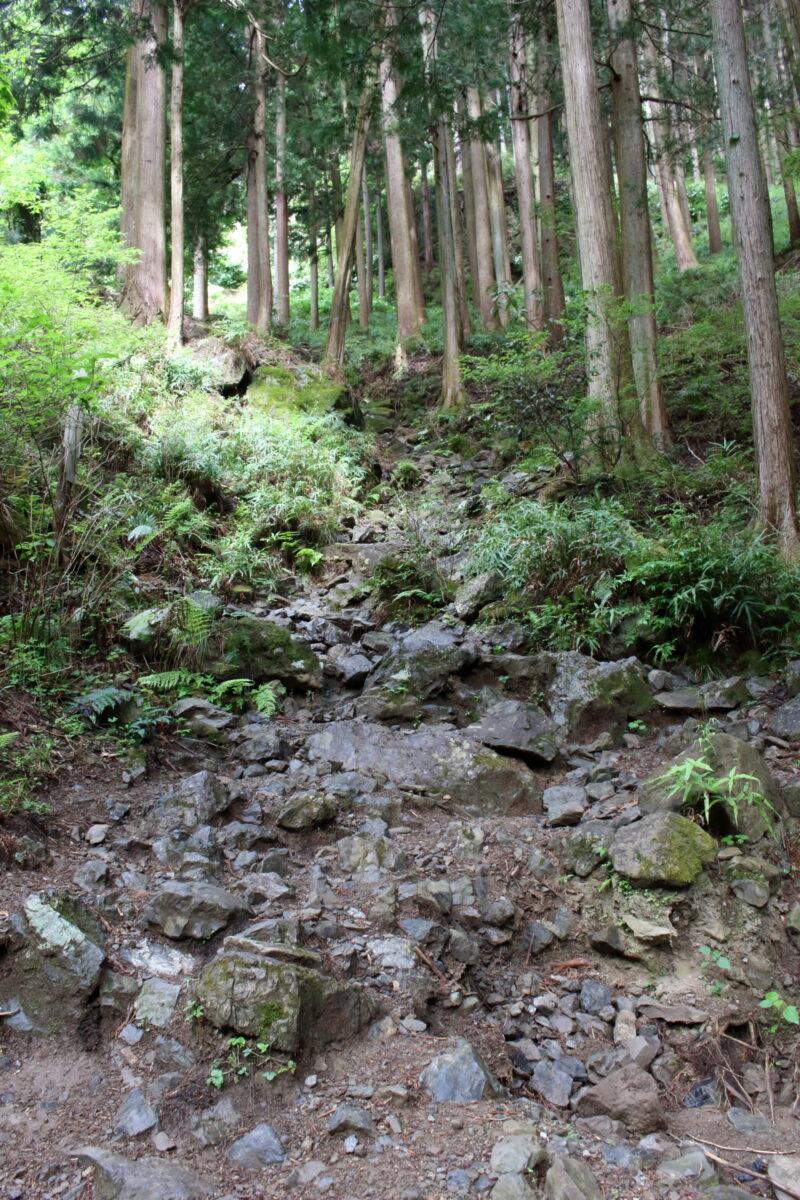石が多めの高水山への登山道