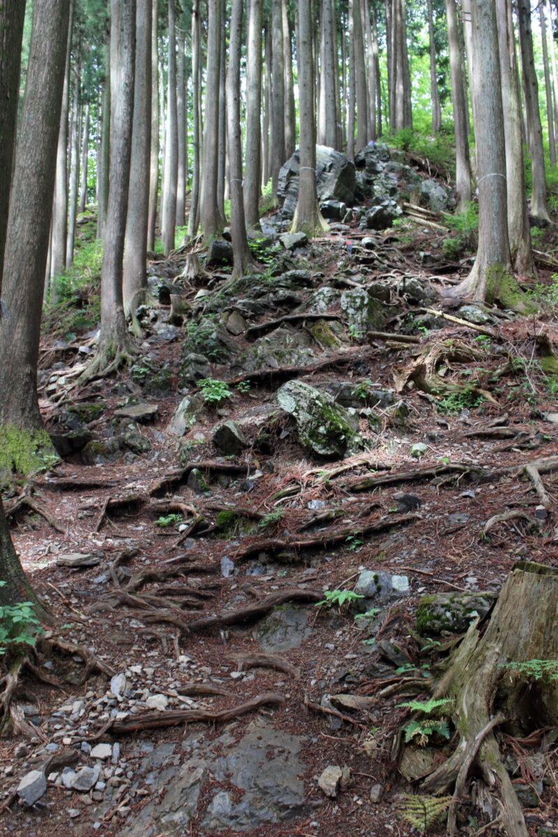 岩茸石山山頂直下の急登