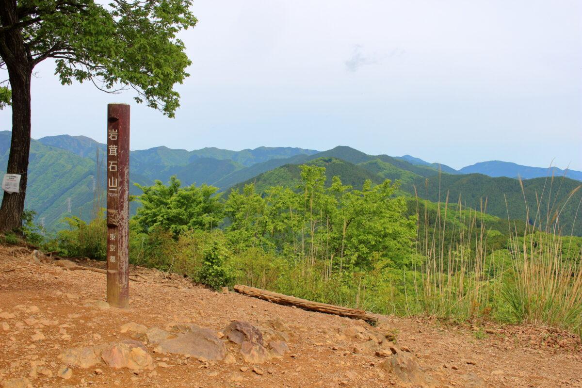 岩茸石山山頂
