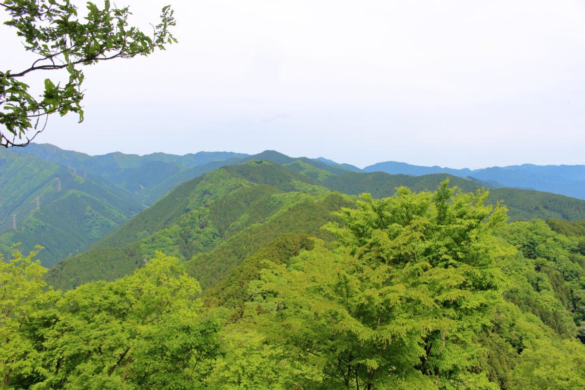 岩茸石山山頂から眺める棒ノ折山