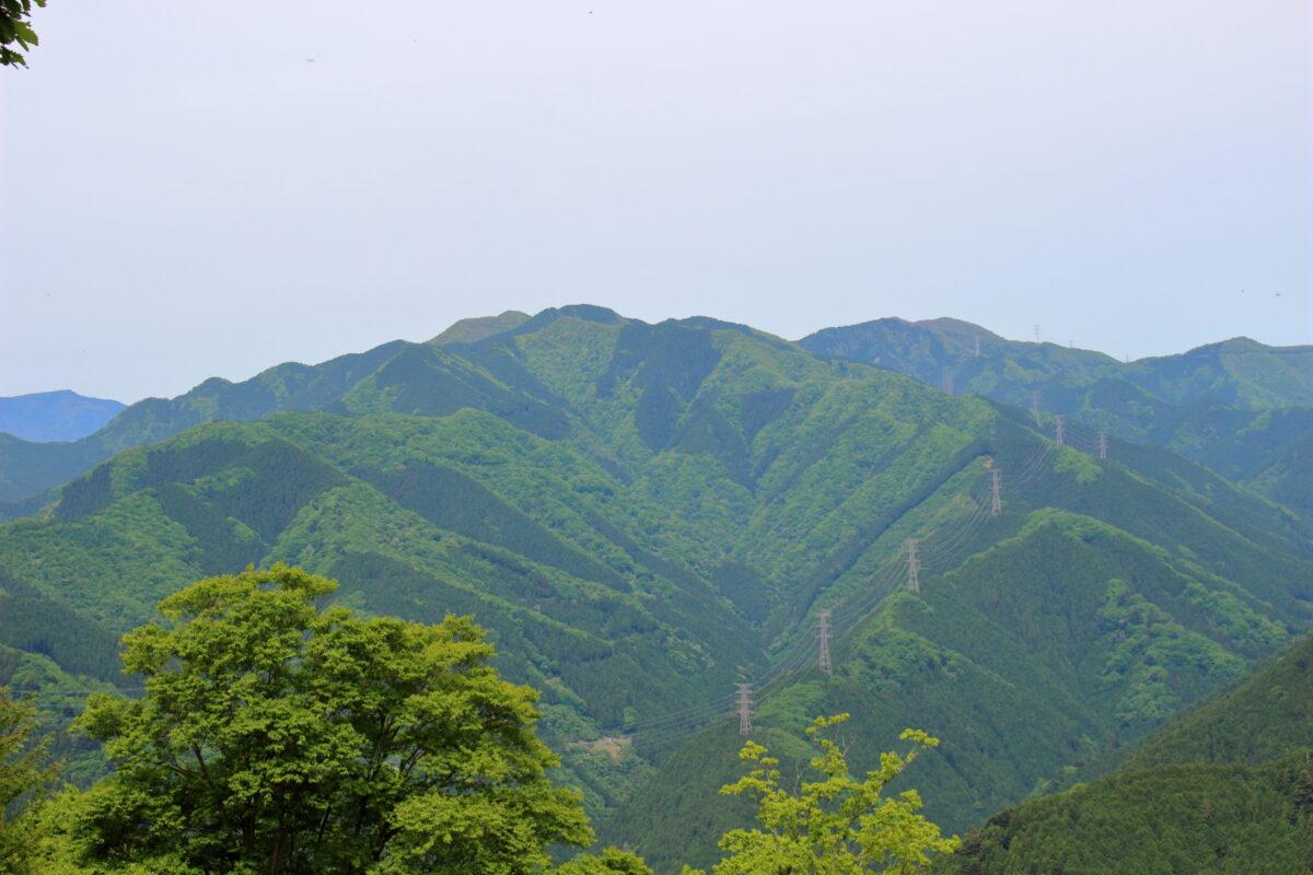 岩茸石山山頂から眺める奥多摩の山々