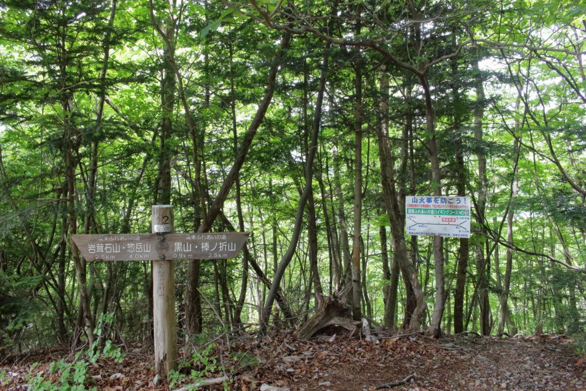 岩茸石山と棒ノ折山の中間点