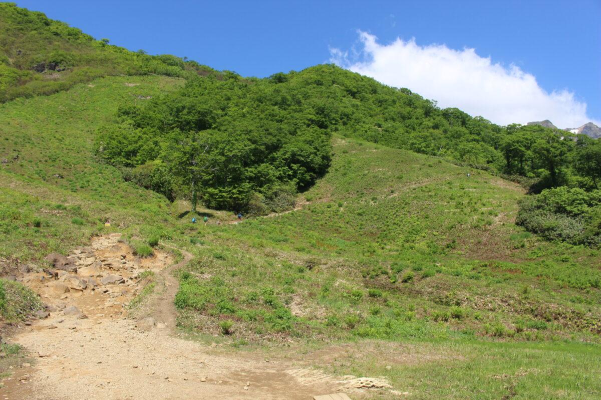 天神平から天神尾根の登山コースへ