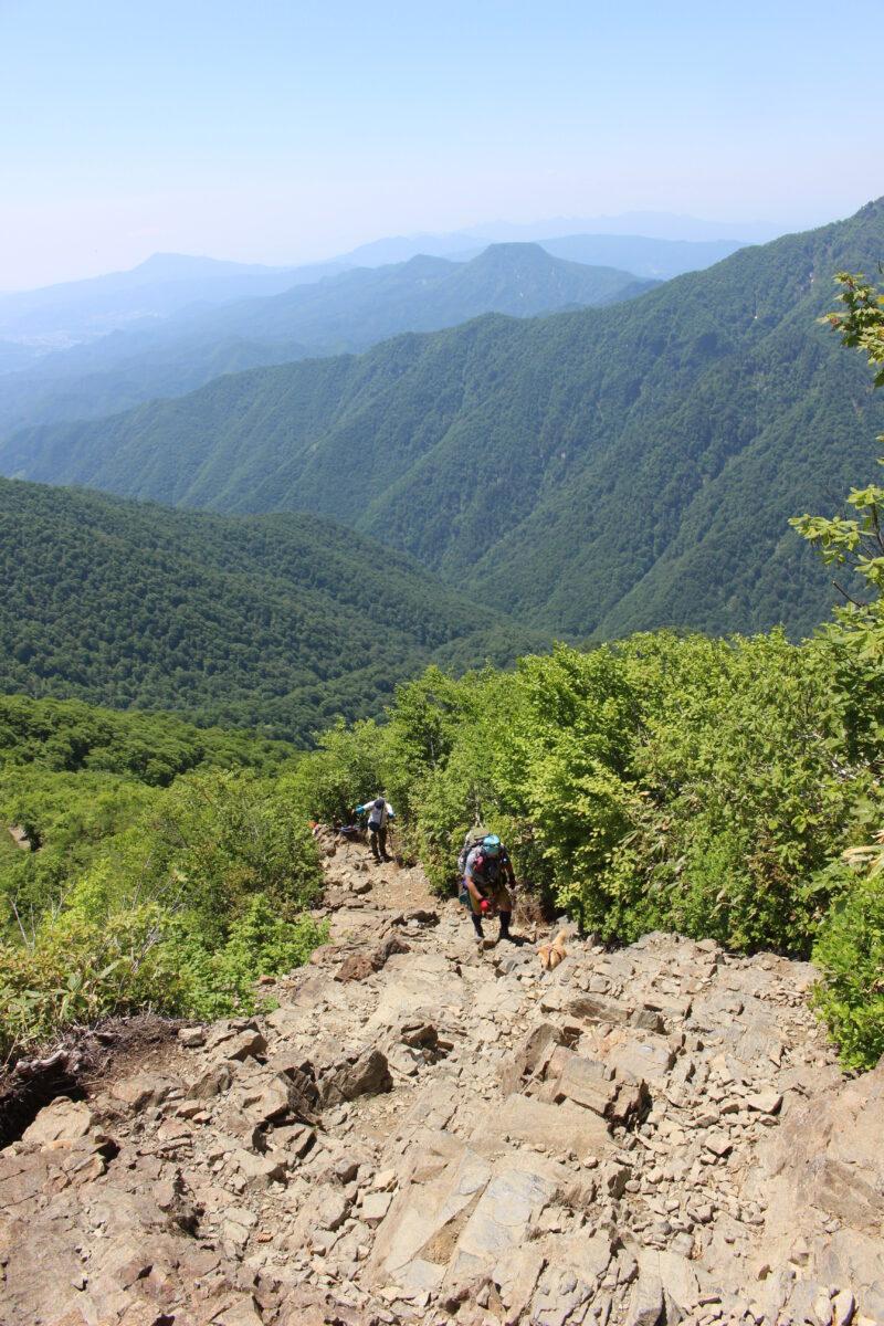 天神尾根ルートの森林限界