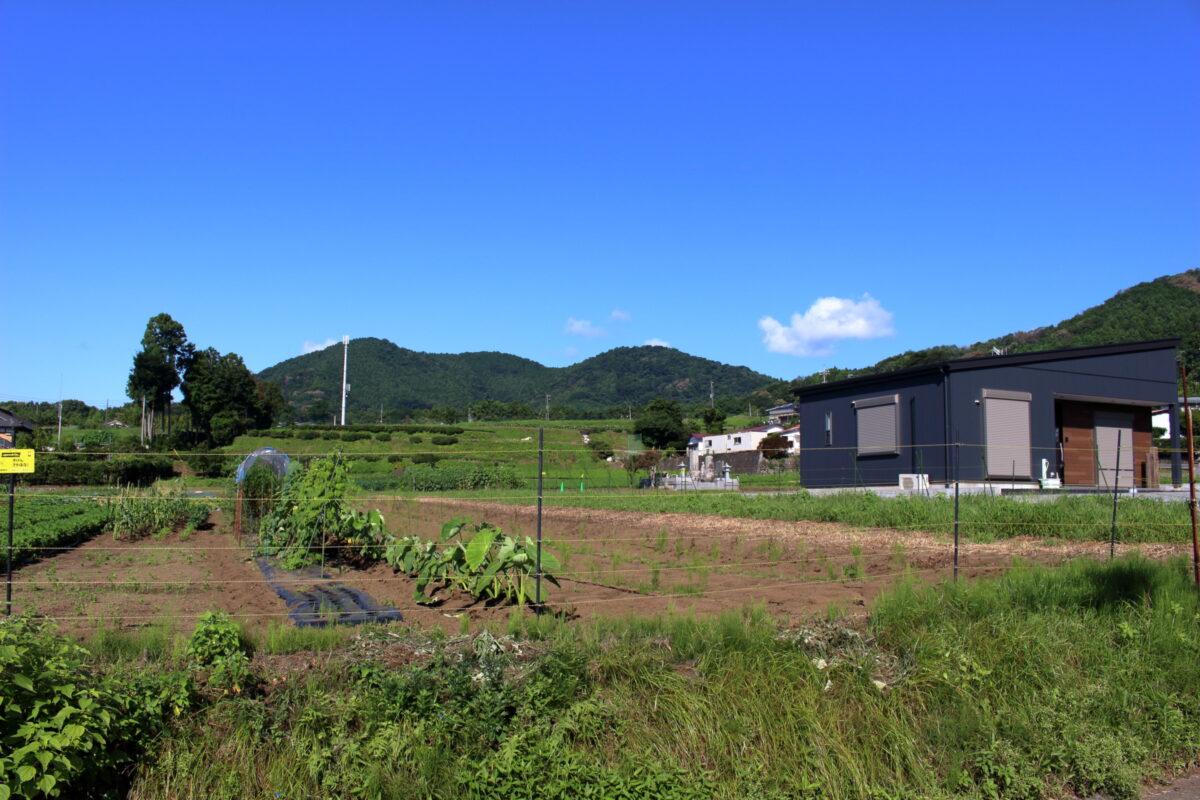 大倉バス停から登山口への道