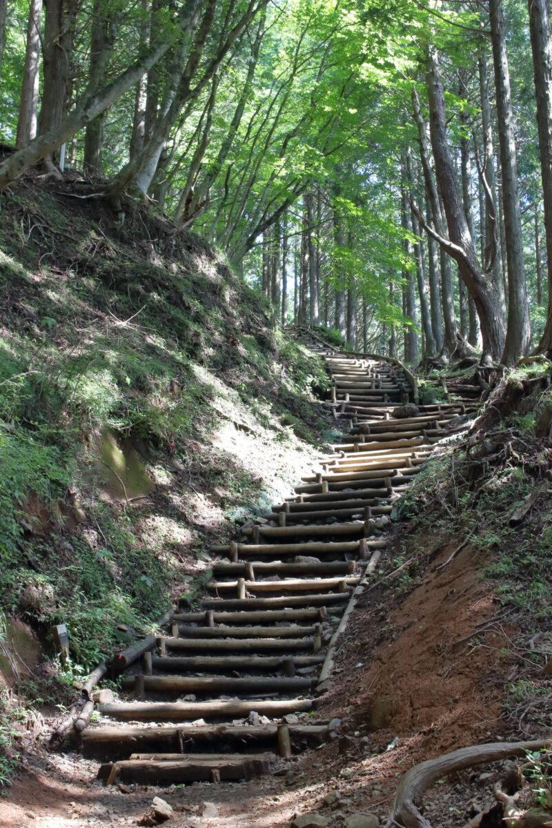 大倉尾根の急な階段