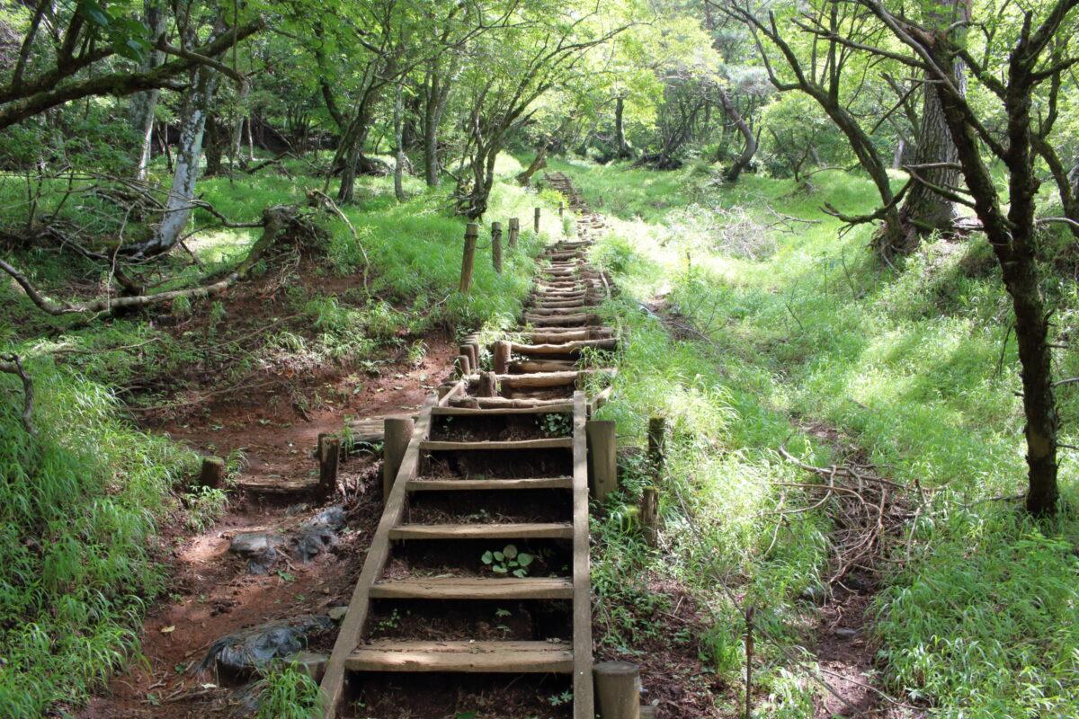 堀山の家から先は急な階段が続く