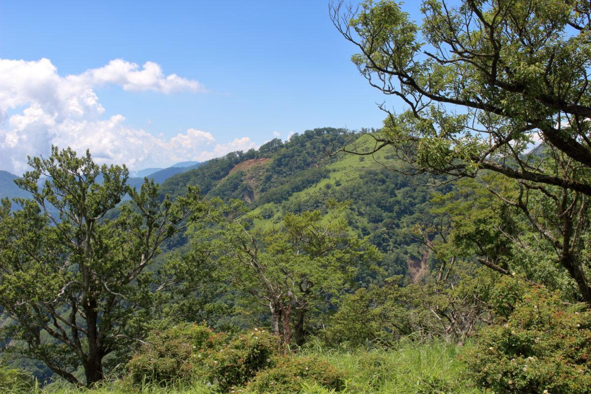 丹沢山山頂からの眺望