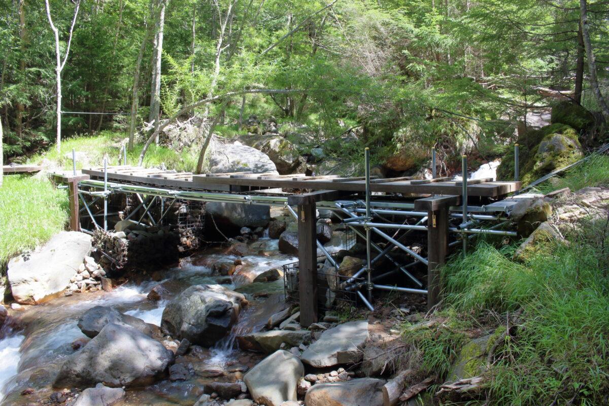 沢に架けられた木の橋