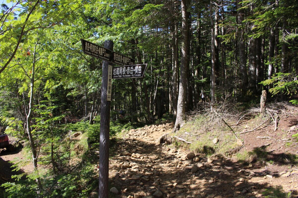 行者小屋から赤岳鉱泉への登山道入口