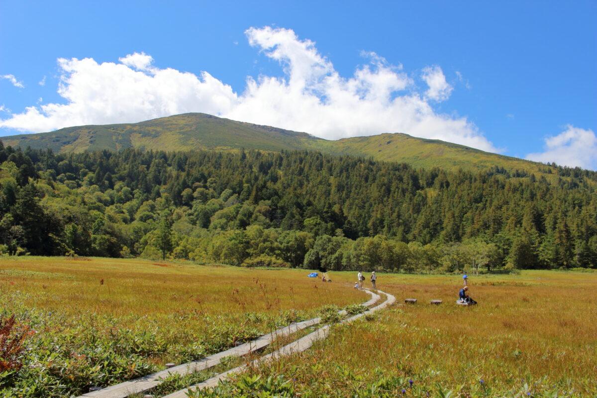 研究見本園から眺める至仏山