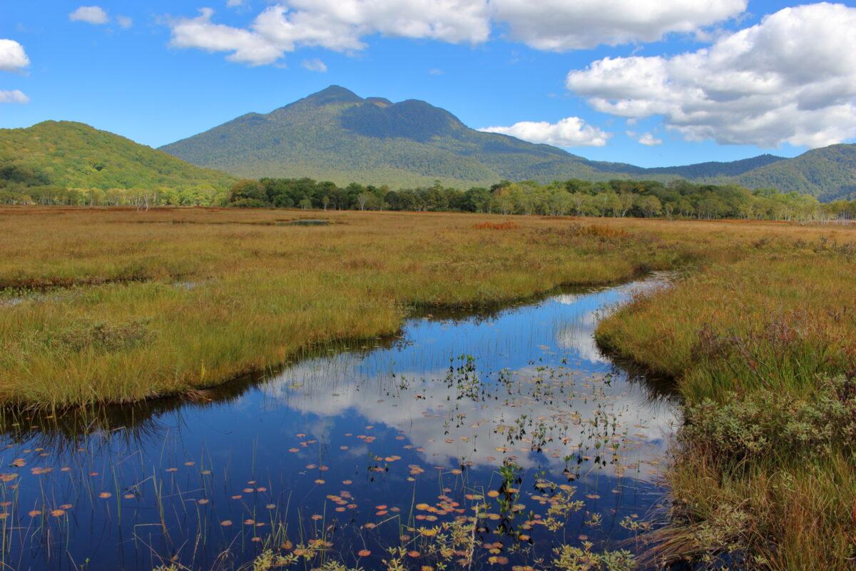 尾瀬ヶ原の池塘と燧ヶ岳