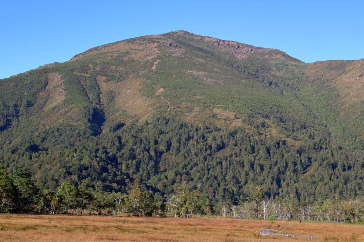 至仏山の斜面を登る直登ルート