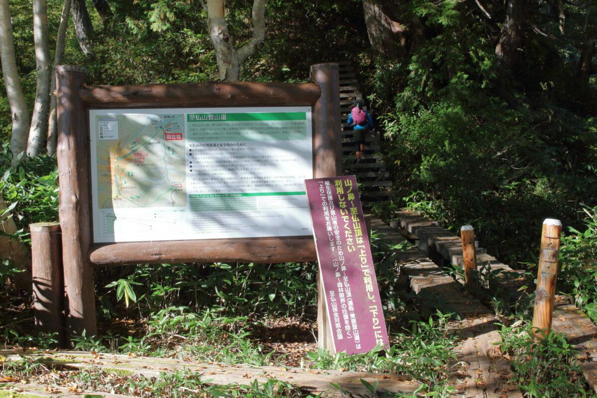 研究見本園の奥にある至仏山の登山口