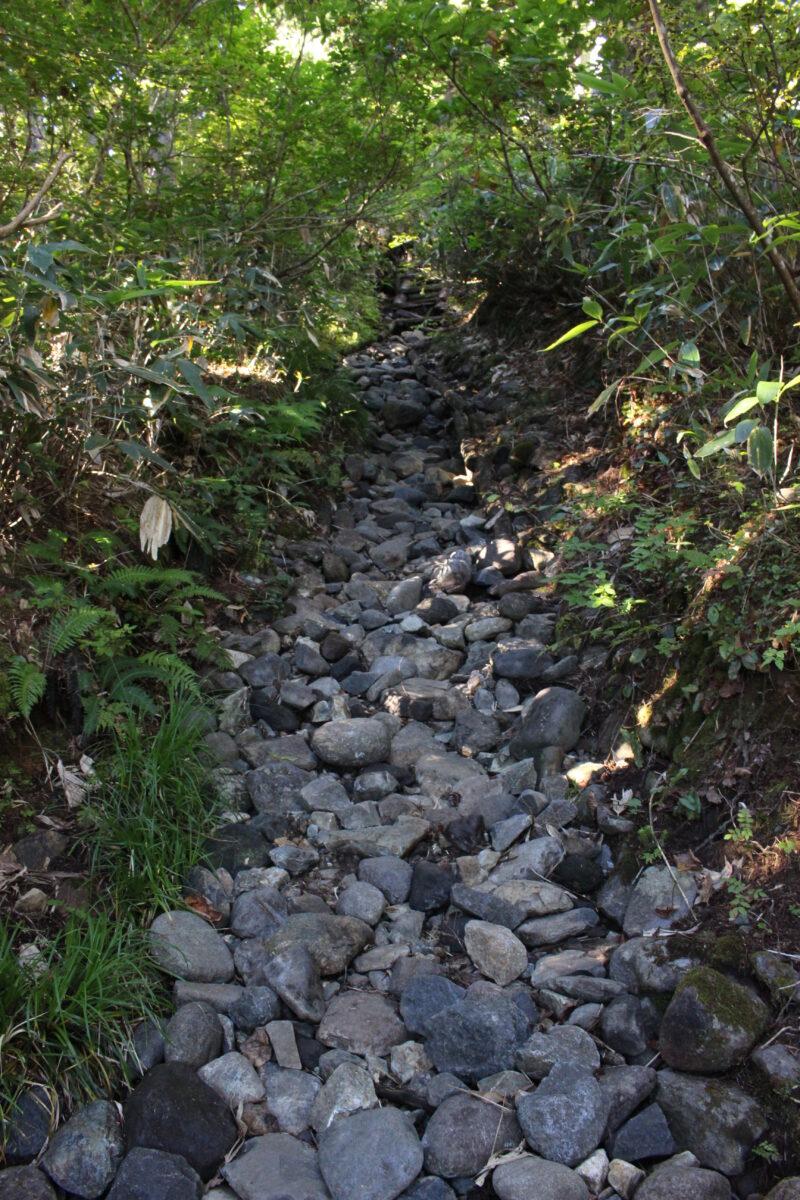 石が多い登山道の山ノ鼻ルート