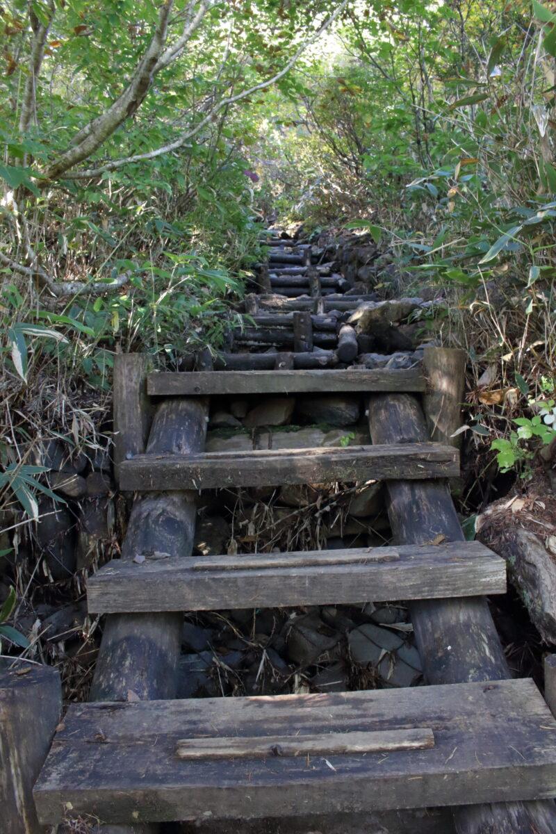 序盤は階段が続く山ノ鼻ルート