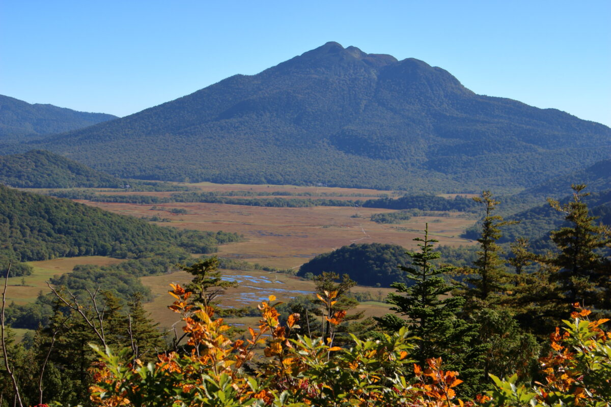 樹林帯を抜けた直後に眺める尾瀬ヶ原と燧ヶ岳