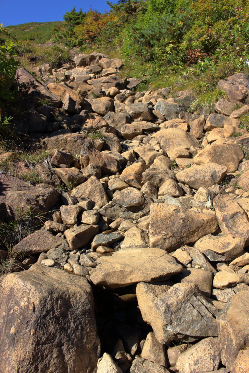 樹林帯を抜けると急な岩場が続く山ノ鼻ルート