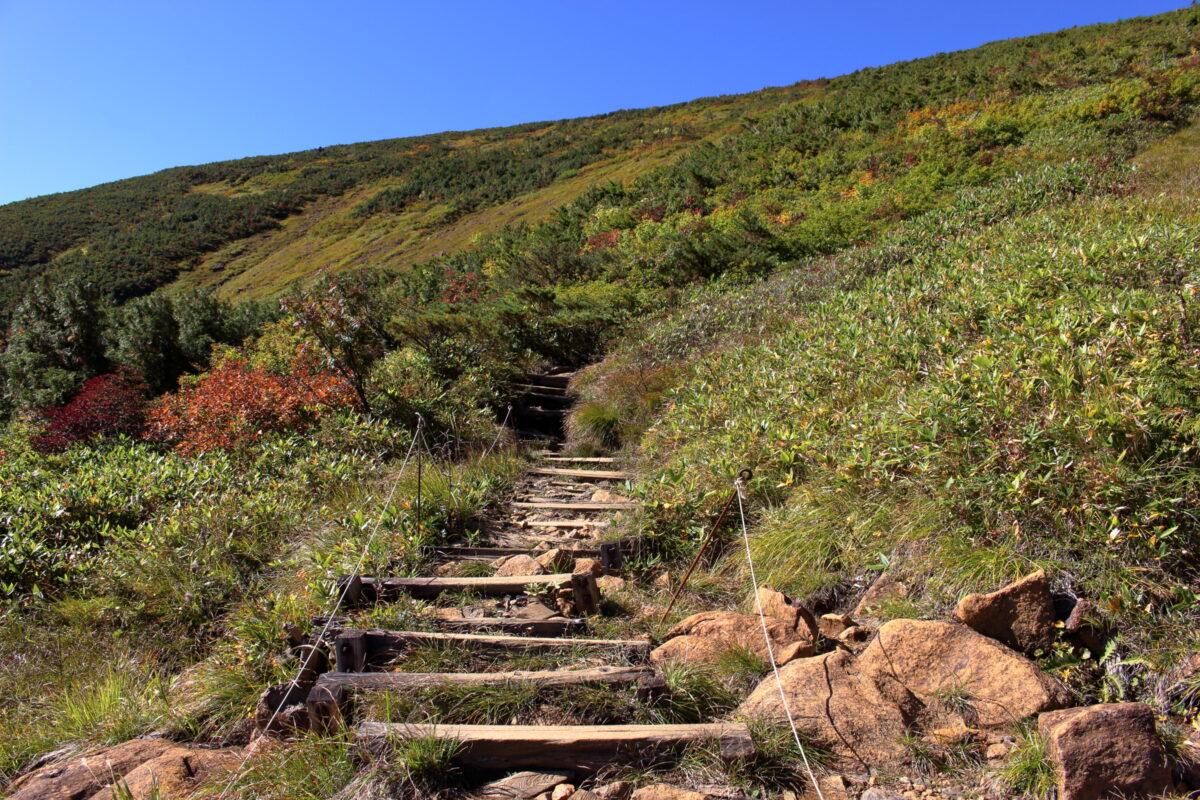 岩場の間には階段も出てくる山ノ鼻ルート